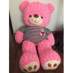 Gấu Teddy m2 - Gấu bông Teddy 1m2 giá rẻ - Màu Hồng - Hm2