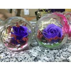 Quà tặng 20-10 Lọ thủy tinh Hoa sáp thơm