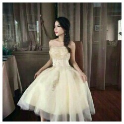Đầm xoè cúp ngực công chúa