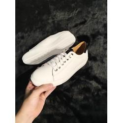 Giày Thiết Kế