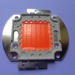 CHIP LED 50W - CÂY TRỒNG