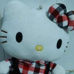 Mèo Hello Kitty dễ thương,giá rẻ