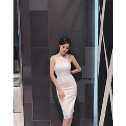 Đầm body ren cổ yếm hàng nhập! MS: S111146 Giá sỉ: 165k
