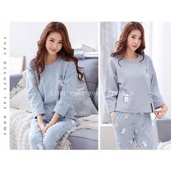 Bộ mặc nhà cotton dài tay BN06