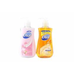 Nước rửa tay Dial diệt khuẩn dưỡng ẩm