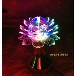 Đèn Led hoa sen cầu xoay nhiều màu D21