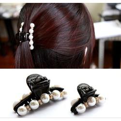 Combo 2 kẹp gắp tóc thời trang