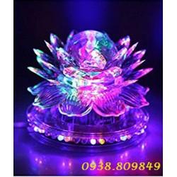 Đèn Led đĩa hoa sen cầu xoay nhiều màu D4