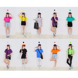 Áo thun trơn nữ kiểu Hàn Quốc vải dày mịn thời trang Everest-Nhiều màu  Aotronnu