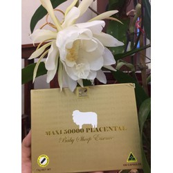 Nhau thai cừu Maxi 50000 Placetal Baby Sheep Essence của Úc  100viên