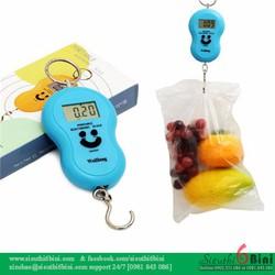 Cân điện tử Portable mini cầm tay - 50kg