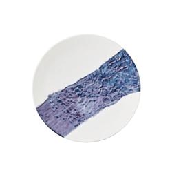 Đĩa gốm sứ Nhật Bản dùng ăn tối 28cm - họa tiết dòng sông