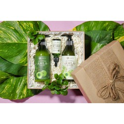 Bộ sản phẩm chăm sóc tóc và trị rụng tóc organic amla