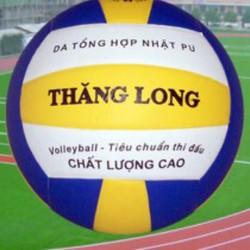bóng chuyền thăng long