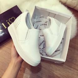giày bata đế độn cao câp-pll4176