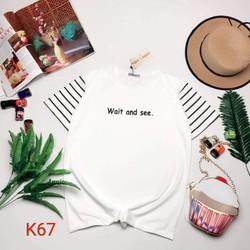 Áo thun Ken T- shirt