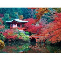 Tour Du lịch Nhật Bản 6 ngày 5 đêm - Tết Nguyên Đán