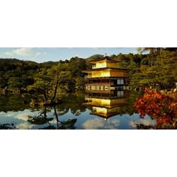 Tour du lịch Nhật Bản 5 ngày 4 đêm cùng Du lịch Việt Online