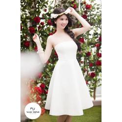 Đầm Ngọc Trinh xòe kiểu cúp ngang sang trọng
