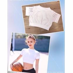 Áo croptop tập yoga, thể dục, thể hình, gym cao cấp màu trắng