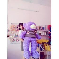 Gấu Bông Teddy Màu Tím Size 1m4