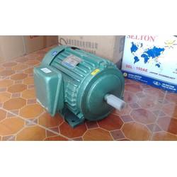 Động cơ điện 4kw-3 pha
