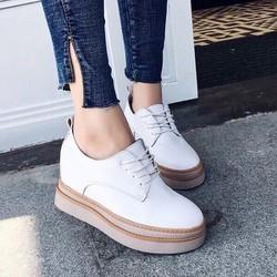 giày bata đế độn ca tính-pll4252
