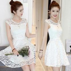 Đầm xoè ren 2 màu trắng và hồng y hình