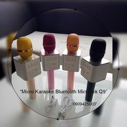 Micro Karaoke Bluetooth MicGeek Q9