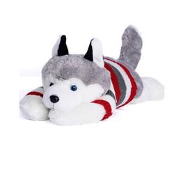 Chó bông Husky dễ thương 50cm