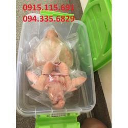 Gà Đông Tảo trống Thịt