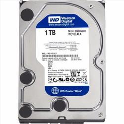 Ổ Cứng Western HDD WD Caviar Blue 1TB 64M 7200RMP