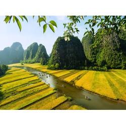 Du lịch Tam Cốc và cố đô Hoa Lư một ngày