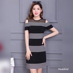 Đầm ôm đen phối sọc đô lưới