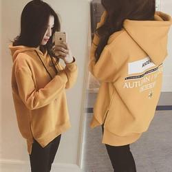 Áo hoodie nỉ bông hàng Quảng Châu