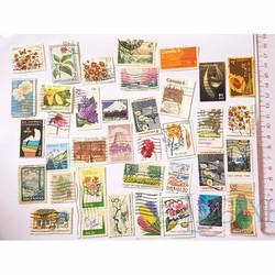 Bộ Sưu Tập Tem Legaxi Chủ đề Hoa và Thực vật x 10 tem