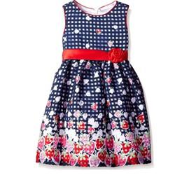Đầm dự tiệc bé gái American Princess