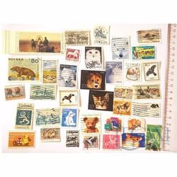 Bộ Sưu Tập Tem Legaxi Chủ đề Động vật x 20 tem