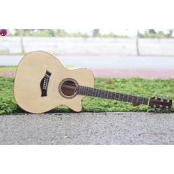 Guitar Acoustic Custom Mahogany AB30