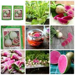 BỘ 10 gói Hạt giống củ cải đỏ dưa hấu ruột đỏ tặng 2 phân bón
