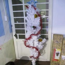 Cây Thông Trang Trí Giáng Sinh