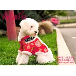 Áo tết dành cho thú cưng - CutePets Phụ kiện chó mèo Pet shop Hà Nội