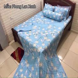 BỘ CHĂN GA GỐI COTTON POLY MẪU PHONG LAN XANH