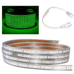 Cuộn 100 mét đèn Led dây 5050 ánh sáng xanh lá và 1 đầu nối dây nguồn