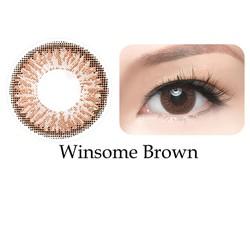 Kính giãn  tròng Freshkon 1 ngày - màu Winsome Brown