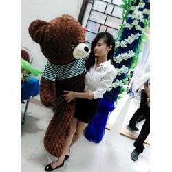 Gấu bông teddy giá rẻ tại TP. Hồ Chí Minh