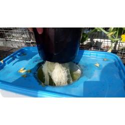 thùng trồng rau thủy canh