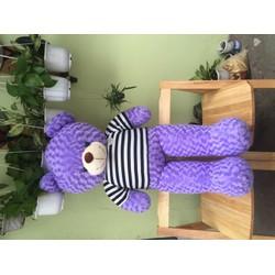 Quà tặng gấu Teddy khổ 1m4 màu tím