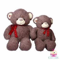 Gấu Tai Môi