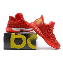 giầy thể thao nhiều màu ôm chân mới nhất